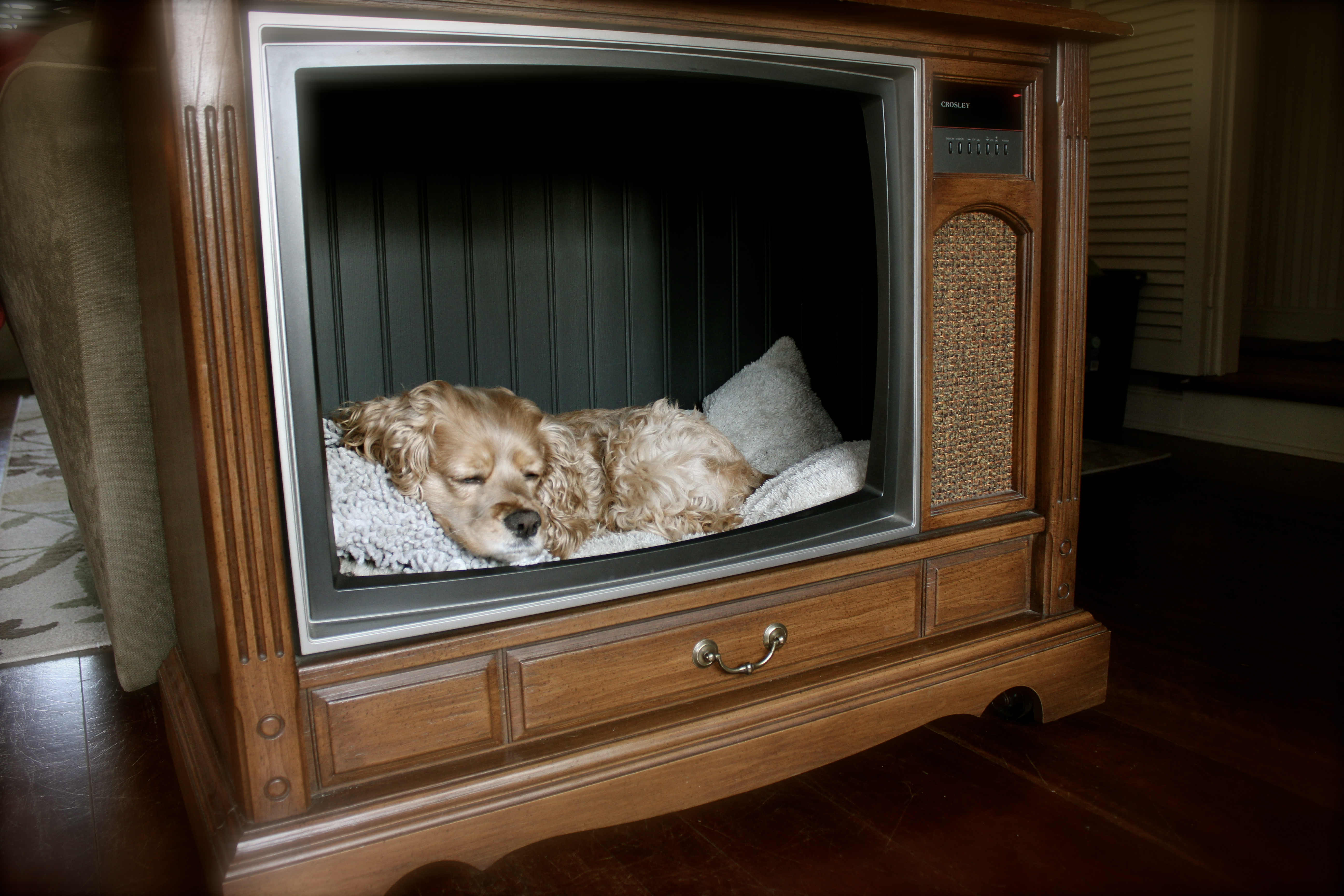 Upcycle An Old Console Tv Celebrate Every Day