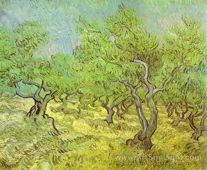 N-V0002-0280-olive-orchard-saint-remy-june